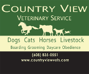 Country View Vet